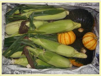 2008 10 11 野菜003.jpg