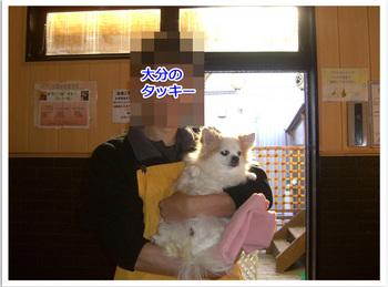 2011 01 30 綱吉の湯03.jpg
