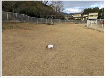 2013 02 25 絆10.JPG