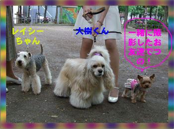 Cho2008 05 05 019.jpg