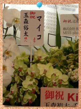 お花マイコ.jpg