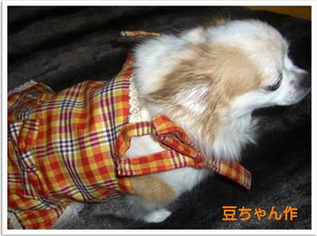豆ちゃん作2008 10 31 020.jpg