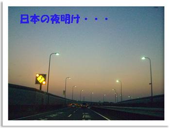 2008 10 17 001.JPG