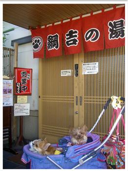 2011 01 30 綱吉の湯01.jpg
