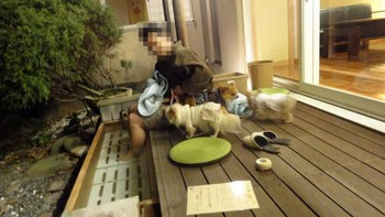 2013 02 24 絆21.jpg