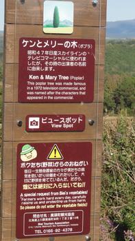 ケンメリの木看板.jpg